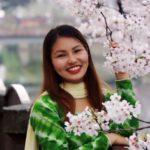 桜写真コンテスト (4/15)